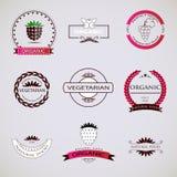 Retro logotyp- och gradbeteckninguppsättning för tappning Royaltyfri Foto