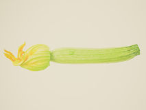 Retro look Courgettes zucchini Royalty Free Stock Photo