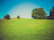 Retro look Primrose Hill London Royalty Free Stock Photography