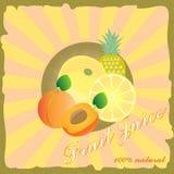 Retro manifesto del succo di frutta Fotografie Stock