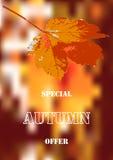 Retro maple leaf on blurry background Royalty Free Stock Photos