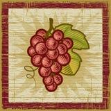 Retro mazzo dell'uva Fotografia Stock
