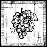Retro mazzo dell'uva in bianco e nero Immagine Stock Libera da Diritti