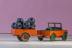 Retro model of car Land Rover transported a blackberries. Royalty Free Stock Images
