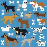 Retro modello senza cuciture del cane del pixel Fotografie Stock