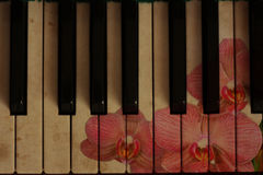 Retro- Musik und Blume Stockfotos