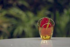 Retro obrazek waza kwitnie tło Zdjęcie Stock