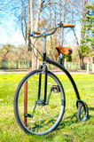 Retro, old style bicycle in the sunny spring green park. Stock Image