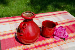 Retro old teapot and red cup in nature background Royalty Free Stock Photo