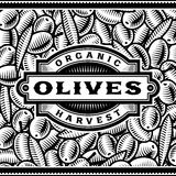 Retro Olive Harvest Label Black And White Royalty Free Stock Photography