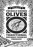 Retro olives poster black and white Stock Photography