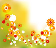 Retro orange and white sprinkled flowers for seasonal designs Royalty Free Stock Photo