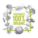 Retro organic food background. royalty free illustration
