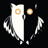 Retro owl in the night Stock Image