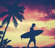 Retro Palm Tree And Surfer. Retro Filtered Silhouette Of A Surfer Carrying His Surfboard WIth Palm Tree Stock Photos