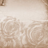 Retro paper background with  roses Stock Photo