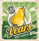 Retro pear poster design Royalty Free Stock Images