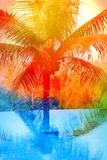 Retro photo of a beautiful watercolor of palm trees Royalty Free Stock Photo