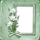 Retro Photo Frame with daisies Stock Photo