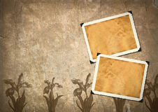 Retro photo framework Royalty Free Stock Image