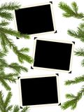 Retro photo framework and Christmas tree Royalty Free Stock Photo