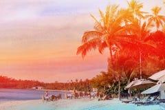 Retro photo of palm trees Royalty Free Stock Photo