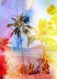 Retro photo of palm trees Stock Image