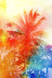 Retro photo of palm trees Royalty Free Stock Photography