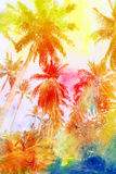 Retro photo of palm trees Stock Images