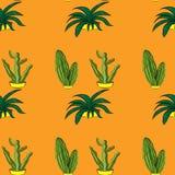 Retro piante senza cuciture del cactus per il modello domestico del fondo dell'illustrazione dentro Fotografie Stock