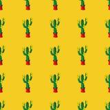 Retro piante senza cuciture del cactus per il modello domestico dell'illustrazione Fotografia Stock Libera da Diritti