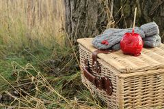 Retro picnic. With wicker basket, gray gloves and candy apple Royalty Free Stock Photos