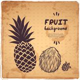 Retro pineapple illustration Royalty Free Stock Photos