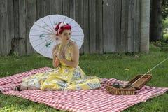 Retro pinup picnic stock image