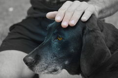 Retro- Portrait Lizenzfreies Stockfoto