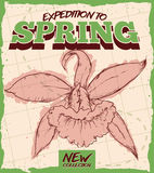 Retro Poster for Springtime with Orchid in Hand Drawn Style, Vector Illustration Stock Images