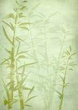 Retro priorità bassa di bambù. Immagini Stock