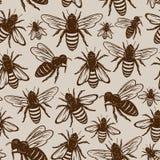 Retro projektujący miodowej pszczoły bezszwowy wzór lub tło ilustracji