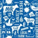 Retro projektujący typograficznego wektoru mleka bezszwowy wzór lub backgro ilustracja wektor