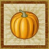Retro pumpkin. On wooden background. Vector illustration in woodcut style Stock Photos