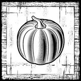 Retro pumpkin black and white Stock Photos