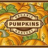 Retro Pumpkin Harvest Label Royalty Free Stock Photo