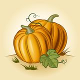 Retro pumpkins Royalty Free Stock Photos