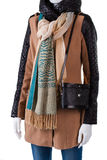 Retro purse and trendy scarf. Stock Photography