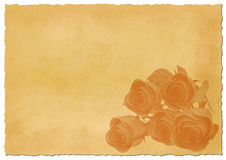 Retro ripped paper with roses Royalty Free Stock Photography