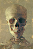 Retro ritratto di stile di uno scheletro Immagini Stock