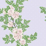 Retro romantic pattern with roses Stock Photos