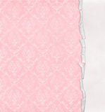 Retro rosa damast design med den sönderrivna kanten Royaltyfria Bilder