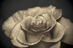 Retro Rose Royalty Free Stock Photography