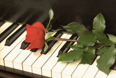 Retro Rose on Piano Keys. Red rose lying on piano keys. Vintage picture with noise added for retro look Stock Images